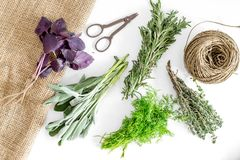 Making spices with fresh herbs and greenery for cooking white kitchen table background top view pattern Stock Photos