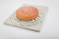 Making sponge cakes, cooked cake on round cooling rack Stock Images