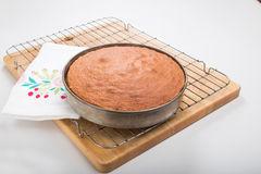 Making sponge cakes, cooked cake in still in the tin Stock Image