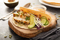 Making tacos with grilled chicken and avocado Stock Images
