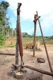 Making tapioca, Venezuela Stock Image
