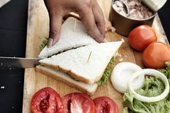 Making tuna sandwich Stock Photography