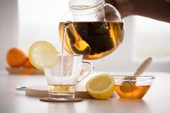 Making of valerian infusion tea set Stock Images