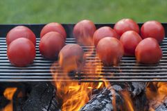 Making vegetables on grill- tomatoes and aubergines. Barbecue in the fresh air of delicious vegetables Royalty Free Stock Images