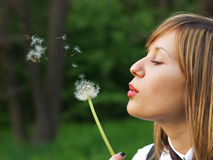 Making a wish Royalty Free Stock Images