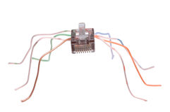 Making World Wide Web. Spider made of RJ45 network connector stock images