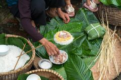 Making wrapping Chung Cake, the Vietnamese lunar new year Tet food outdoor with old woman hands and ingredients. Closed-up. royalty free stock images