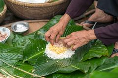 Making wrapping Chung Cake, the Vietnamese lunar new year Tet food outdoor with old woman hands and ingredients. Closed-up. stock photography