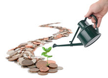 Making your money grow. Caoncept of making you money grow, isolated on white Stock Image