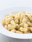 Makkaroniteller mit Zucchini und Parmesankäse Lizenzfreies Stockbild