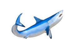 Mako rekin pokazuje zębów pływać odizolowywam Fotografia Royalty Free