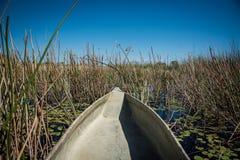 Makoro canoes delta Botswana de Okavango imagens de stock royalty free