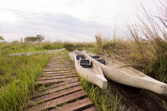 Makoros by Dock in Okavango Delta Royalty Free Stock Images