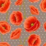 Makowa bezszwowa tapeta Zdjęcie Royalty Free