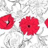 Makowi kwiaty Obraz Royalty Free