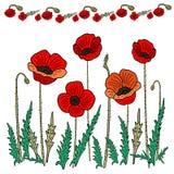 Makowy kwiatu set r?wnie? zwr?ci? corel ilustracji wektora Ręka rysunek w stylu doodling royalty ilustracja