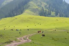 Makra-Spitze shogran Pakistan Lizenzfreie Stockfotos