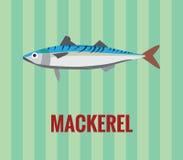 makreel Stock Afbeeldingen