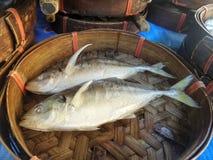 Makreel in bamboemand Royalty-vrije Stock Foto's