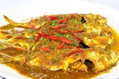 Makreel in droge rode kerrie Stock Foto
