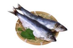 Makreel in een bamboeschotel stock foto