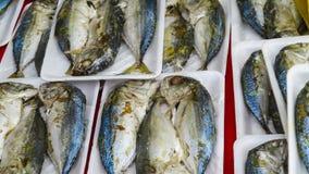 Makreel het verkopen in markt Stock Foto's