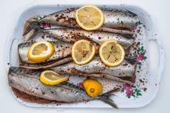 Makreel, met kruiden en citroen wordt gekookt die Royalty-vrije Stock Foto