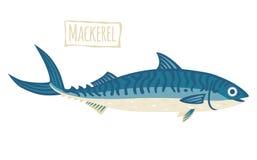 Makreel, vectorbeeldverhaalillustratie Royalty-vrije Stock Afbeelding
