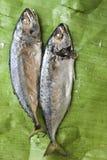 Makrele auf Bananenblatthintergrund stockfotografie