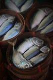 Makrele auf thailändischen Märkten lizenzfreie stockfotos