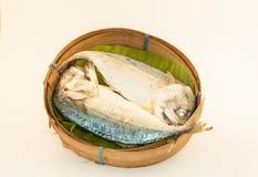 Makrele auf weißem Hintergrund Lizenzfreie Stockbilder