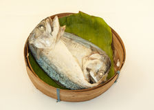 Makrele auf weißem Hintergrund Stockfoto