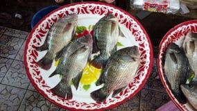 Makrele, die in der Platte mit den Kiemen bewegen die für Abendessen verkauft zu werden Aufwartung, liegt stock footage