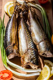 Makrele, essfertiger Fisch, geräucherte Fische Stockbild