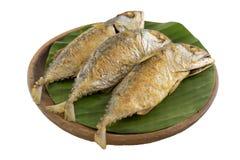 Makrele frittieren Stockbild