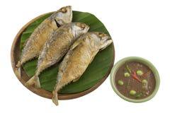 Makrele frittieren Lizenzfreies Stockfoto