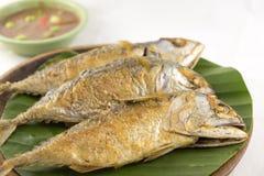 Makrele frittieren Stockbilder