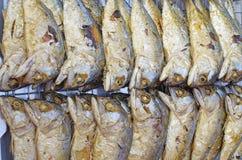 Makrele gebraten Stockfoto