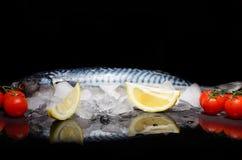 Makrele mit Kirsche auf einer reflektierenden Oberfläche Stockfotografie