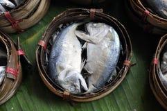Makrelen-Fisch-Bambuskorb Thailand Stockfoto