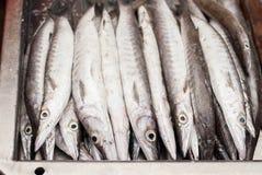 Makrelen von einem Markt in Thaialnd Stockfotos