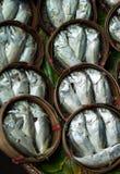 Makrelen von einem Markt, Thailand Stockbild