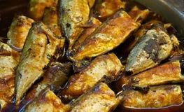 Makreli ryba Obrazy Royalty Free