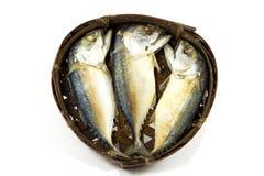 Makreli ryba na bambusowym round koszu Fotografia Stock