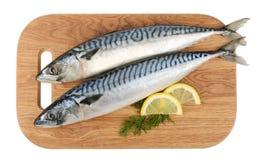 Makreli ryba na drewnianym talerzu odizolowywającym Obraz Stock