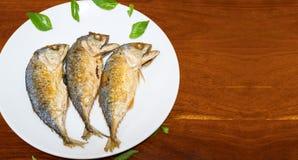 Makreli ryba smażyć i wtedy umieszczająca w naczyniu zdjęcia stock