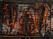 Makrill för havsfisk som grillas på trä Arkivbilder