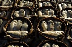 Makrill i runda bambukorgar Royaltyfria Bilder