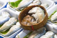 Makrillfisk i bambukorg på marknaden, Thailand Fotografering för Bildbyråer
