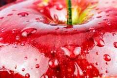 Makro- świeżej czerwieni mokry jabłko Zdjęcie Royalty Free